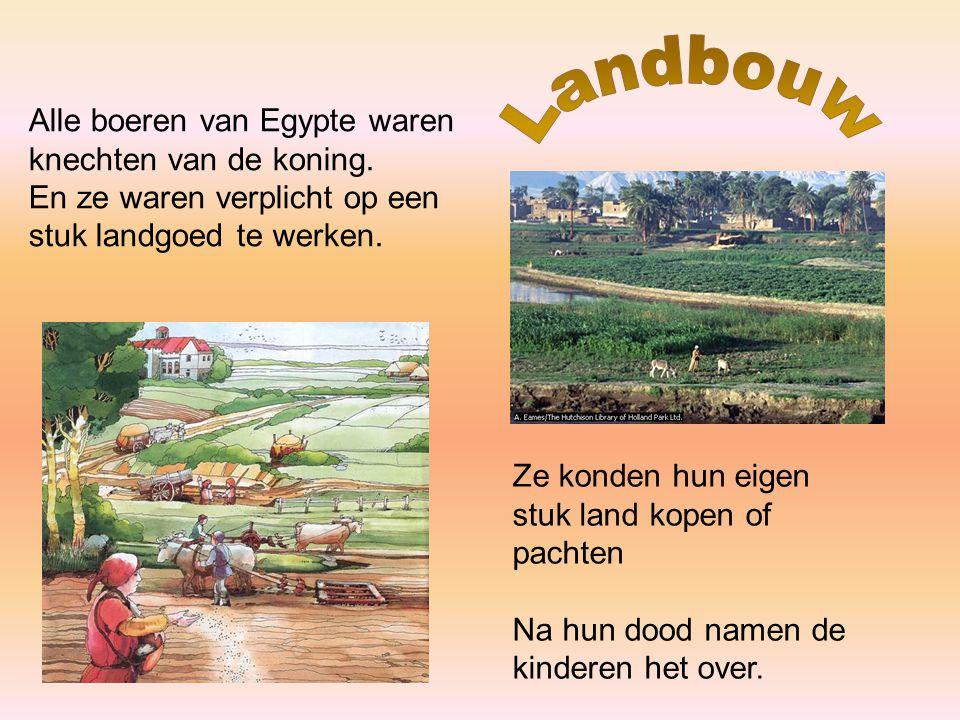 Alle boeren van Egypte waren knechten van de koning. En ze waren verplicht op een stuk landgoed te werken. Ze konden hun eigen stuk land kopen of pach
