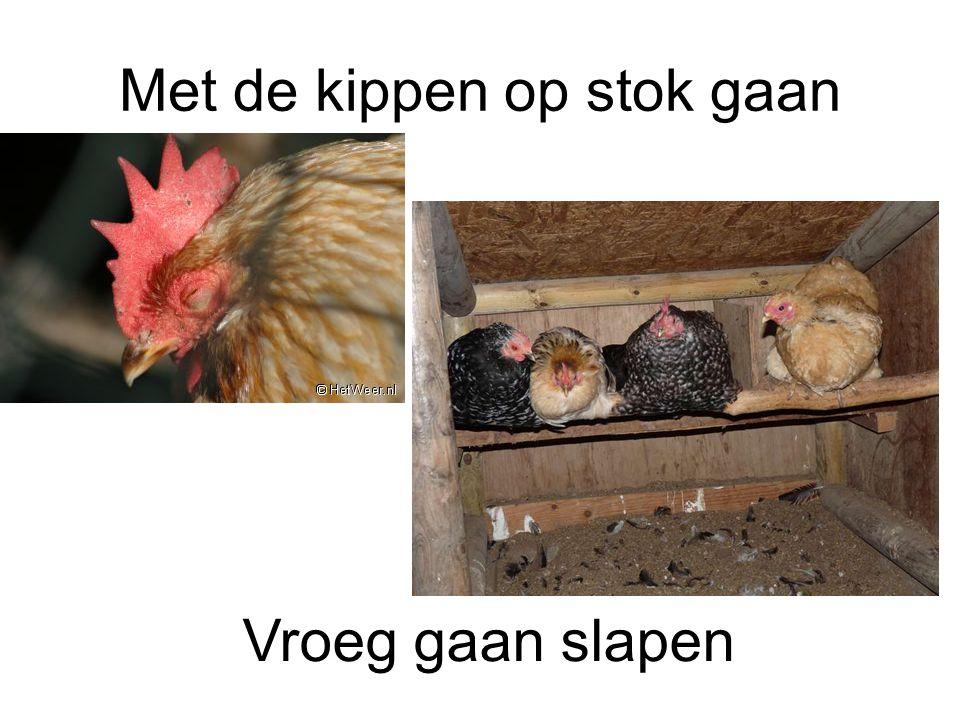 Met de kippen op stok gaan Vroeg gaan slapen