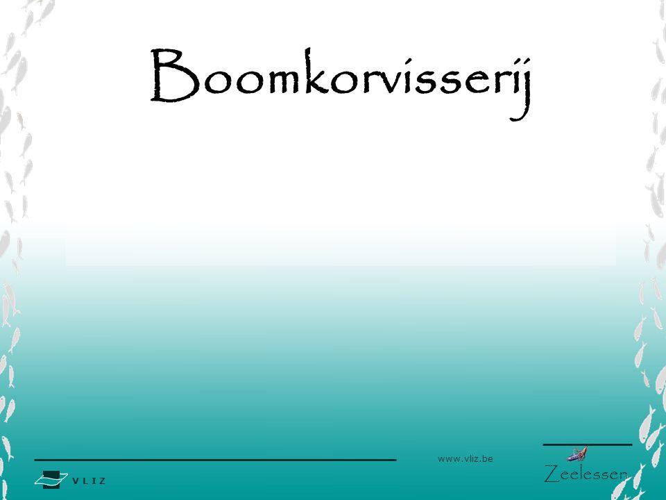 V L I Z www.vliz.be Zeelessen Boomkorvisserij