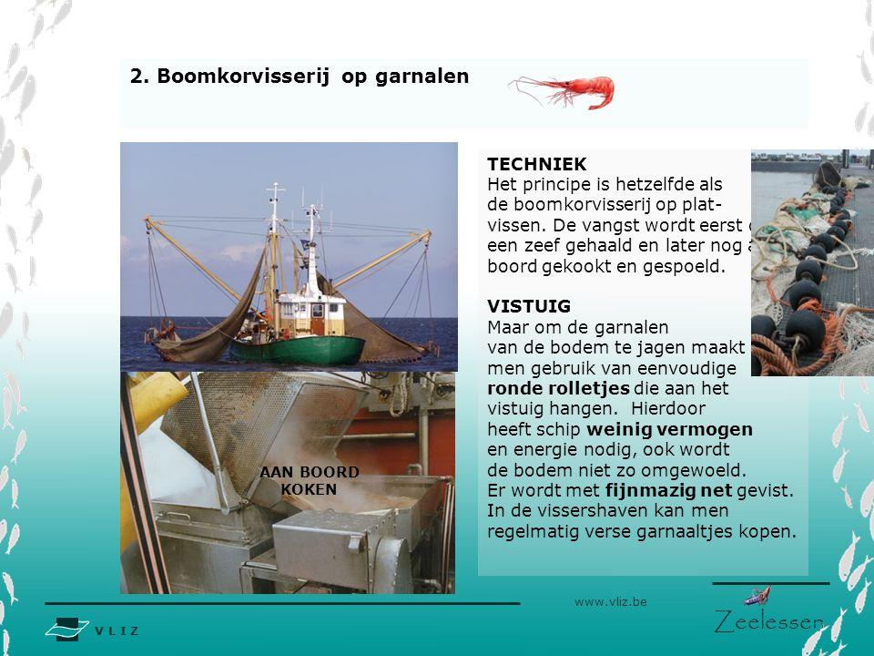 V L I Z www.vliz.be Zeelessen 2. Boomkorvisserij op garnalen TECHNIEK Het principe is hetzelfde als de boomkorvisserij op plat- vissen. De vangst word
