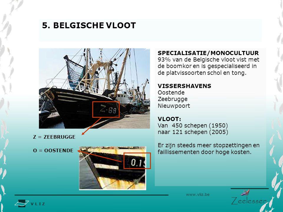 V L I Z www.vliz.be Zeelessen 5. BELGISCHE VLOOT Z = ZEEBRUGGE SPECIALISATIE/MONOCULTUUR 93% van de Belgische vloot vist met de boomkor en is gespecia