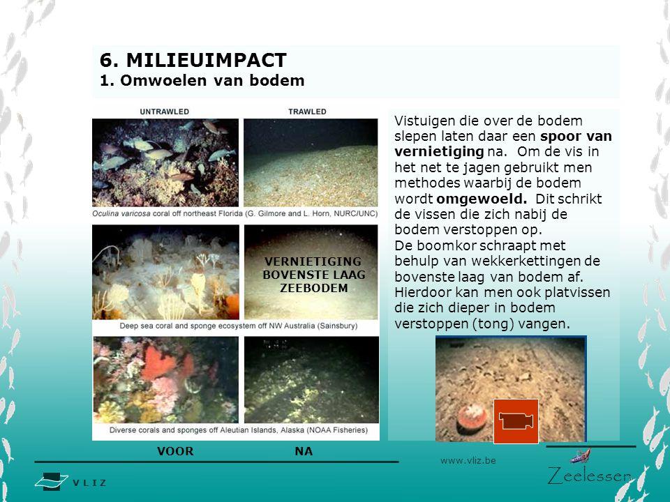 V L I Z www.vliz.be Zeelessen Vistuigen die over de bodem slepen laten daar een spoor van vernietiging na. Om de vis in het net te jagen gebruikt men