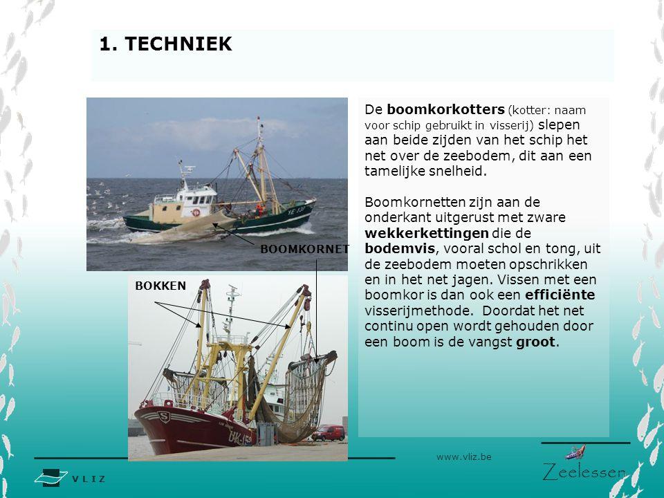 V L I Z www.vliz.be Zeelessen De boomkorkotters (kotter: naam voor schip gebruikt in visserij) slepen aan beide zijden van het schip het net over de z