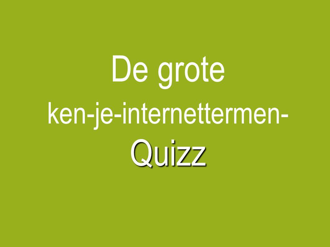 De grote Quizz ken-je-internettermen- Quizz