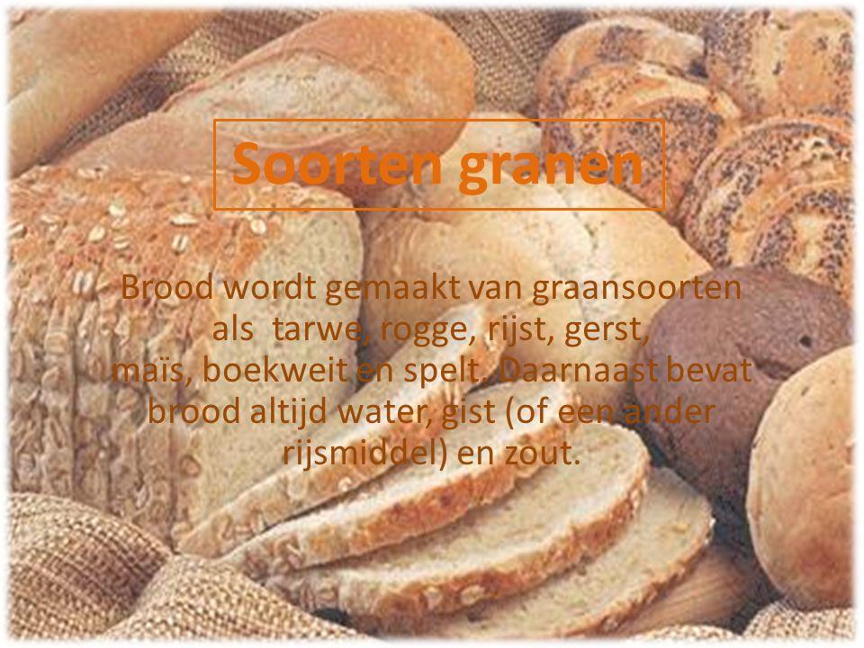 Soorten granen Brood wordt gemaakt van graansoorten als tarwe, rogge, rijst, gerst, maïs, boekweit en spelt. Daarnaast bevat brood altijd water, gist
