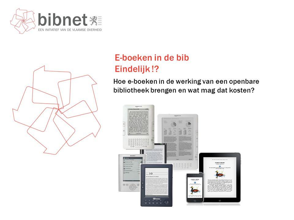 E-boeken in de bib Eindelijk !.