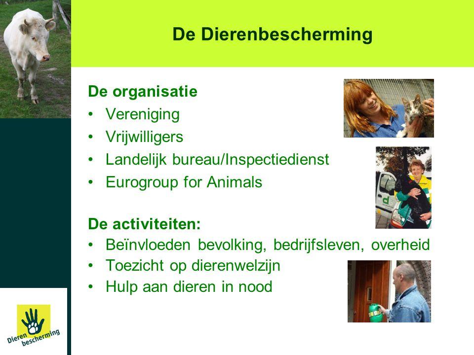 De Dierenbescherming De organisatie •Vereniging •Vrijwilligers •Landelijk bureau/Inspectiedienst •Eurogroup for Animals De activiteiten: •Beïnvloeden
