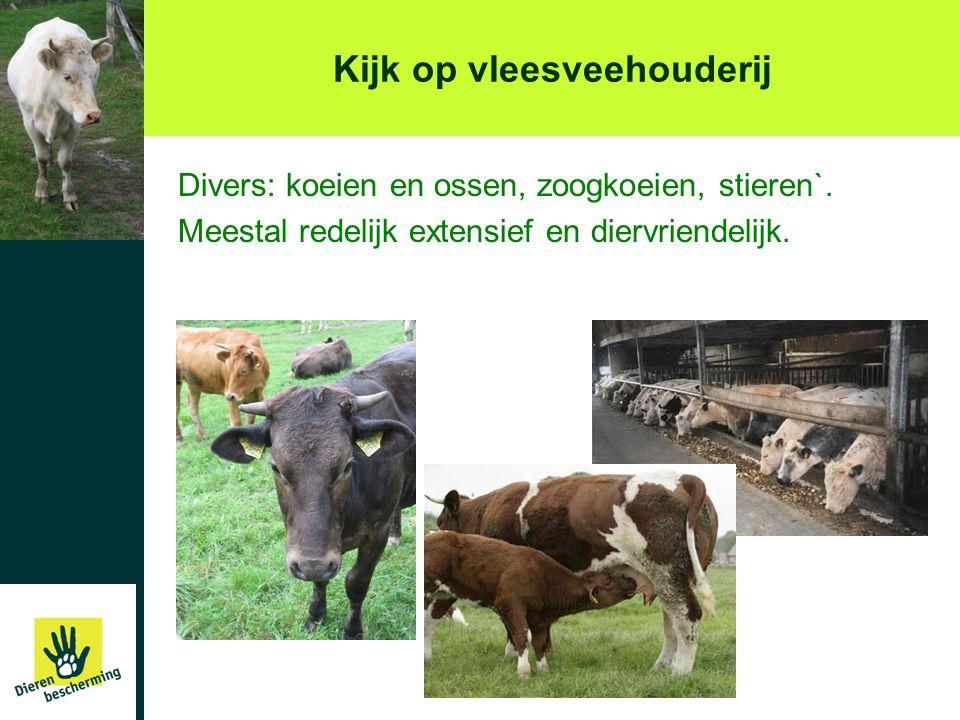 Kijk op vleesveehouderij Divers: koeien en ossen, zoogkoeien, stieren`. Meestal redelijk extensief en diervriendelijk.
