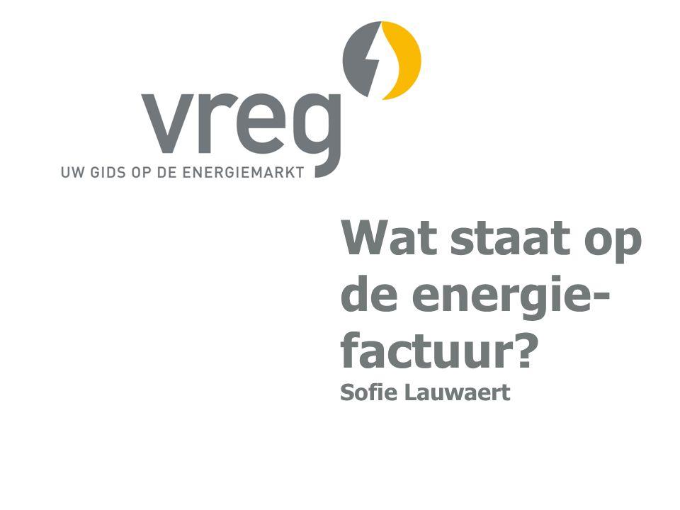 Wat staat op de energie- factuur Sofie Lauwaert