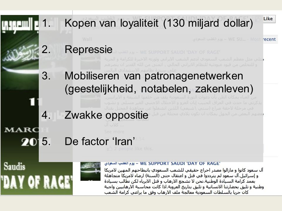 1.Kopen van loyaliteit (130 miljard dollar) 2.Repressie 3.Mobiliseren van patronagenetwerken (geestelijkheid, notabelen, zakenleven) 4.Zwakke oppositie 5.De factor 'Iran'