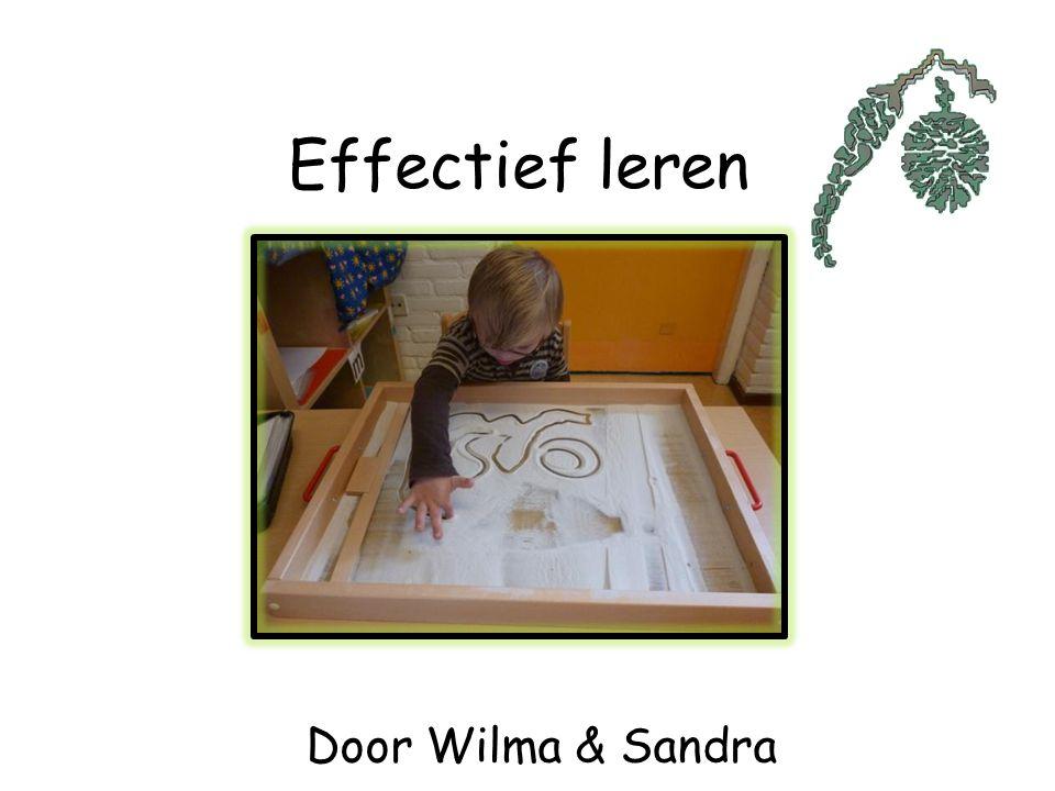 Effectief leren Door Wilma & Sandra
