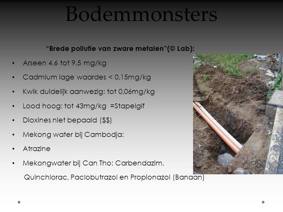 Bodemmonsters Brede pollutie van zware metalen (© Lab): • Arseen 4,6 tot 9,5 mg/kg • Cadmium lage waardes < 0,15mg/kg • Kwik duidelijk aanwezig: tot 0,06mg/kg • Lood hoog: tot 43mg/kg =Stapelgif • Dioxines niet bepaald ($$) • Mekong water bij Cambodja: • Atrazine • Mekongwater bij Can Tho: Carbendazim, Quinchlorac, Paclobutrazol en Propionazol (Banaan)