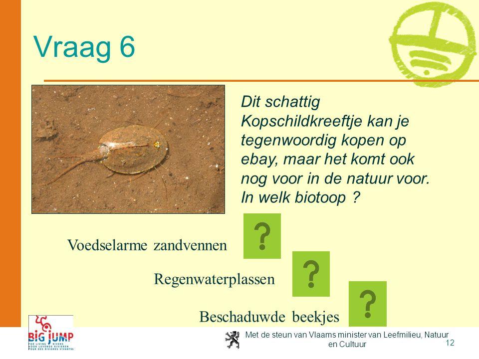 Met de steun van Vlaams minister van Leefmilieu, Natuur en Cultuur 12 Vraag 6 Dit schattig Kopschildkreeftje kan je tegenwoordig kopen op ebay, maar h