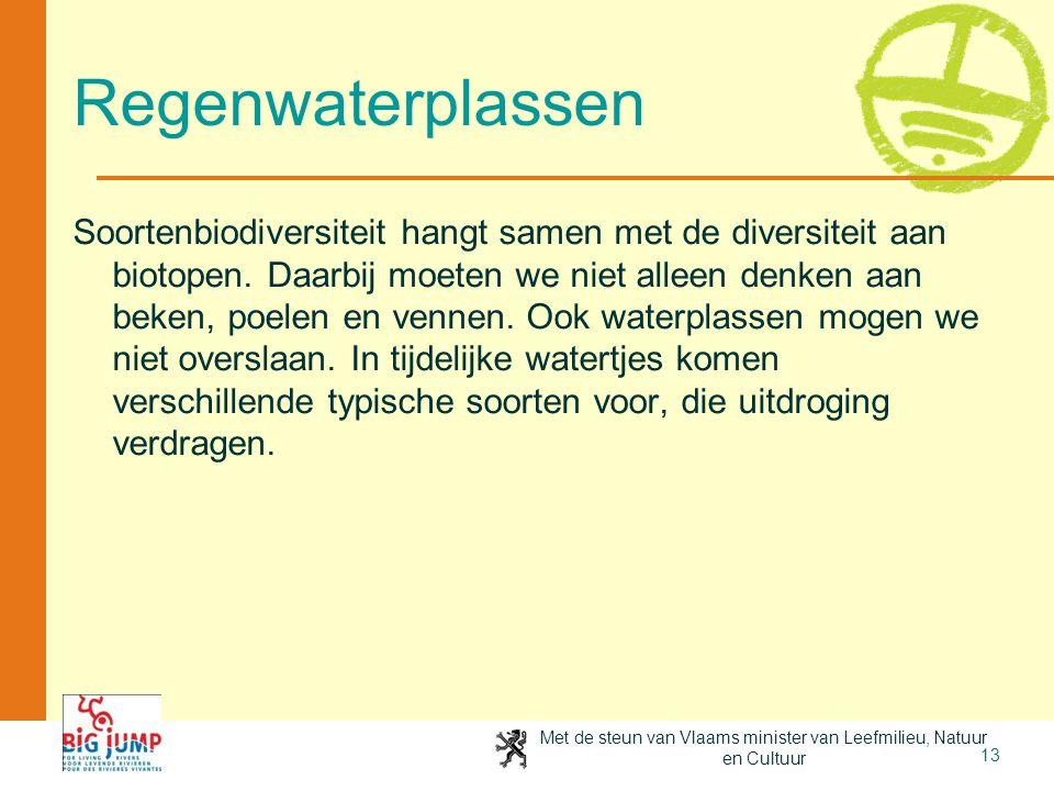 Met de steun van Vlaams minister van Leefmilieu, Natuur en Cultuur 13 Regenwaterplassen Soortenbiodiversiteit hangt samen met de diversiteit aan bioto