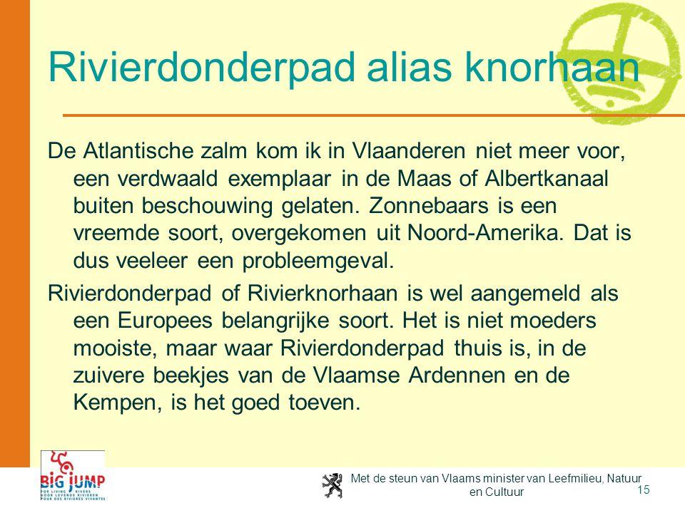 Met de steun van Vlaams minister van Leefmilieu, Natuur en Cultuur 15 Rivierdonderpad alias knorhaan De Atlantische zalm kom ik in Vlaanderen niet mee