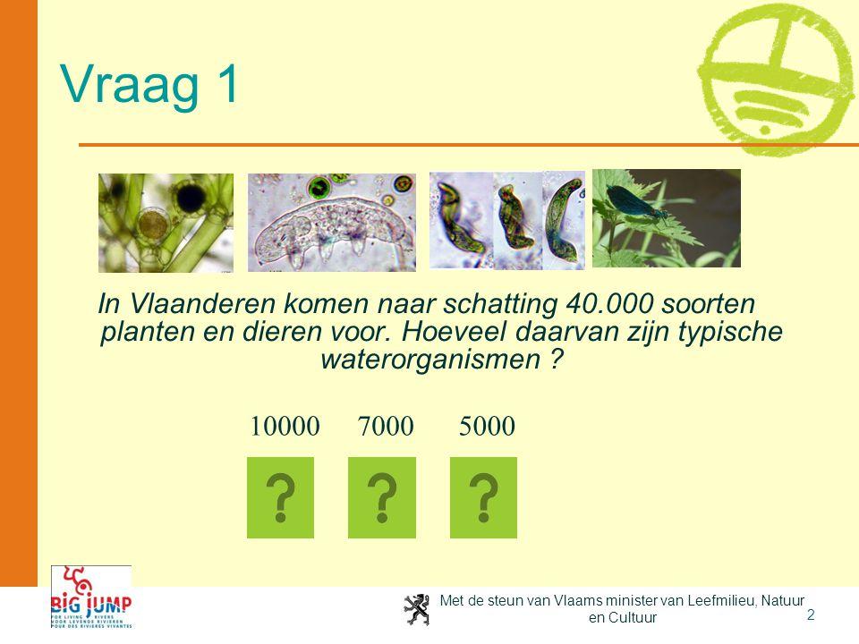 Met de steun van Vlaams minister van Leefmilieu, Natuur en Cultuur 2 Vraag 1 In Vlaanderen komen naar schatting 40.000 soorten planten en dieren voor.