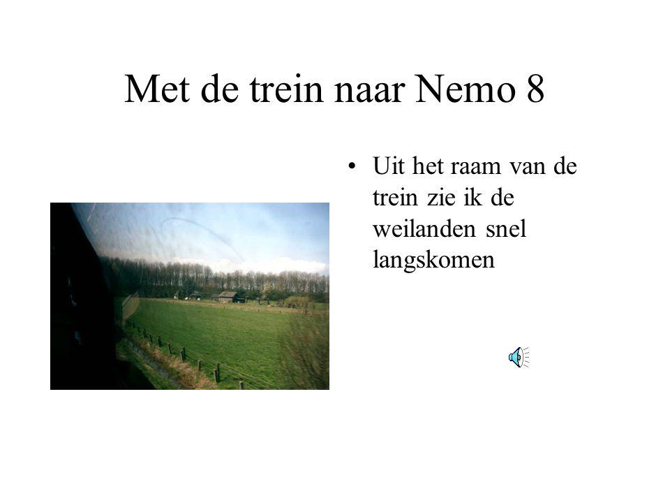 Met de trein naar Nemo 8 •Uit het raam van de trein zie ik de weilanden snel langskomen