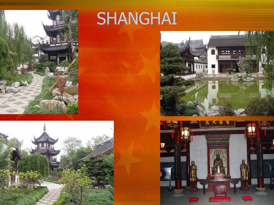 20 SHANGHAI