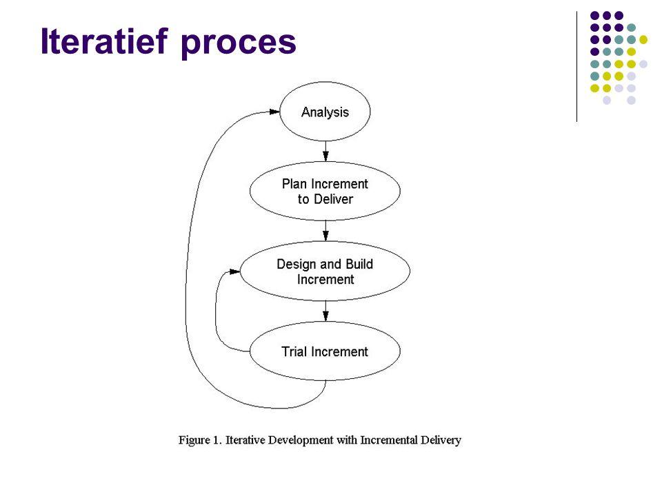 Iteratief proces