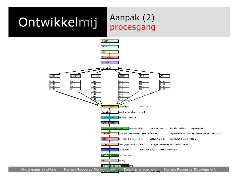 Organisatie inrichting Human Resource Management Talent management Human Resource Development Aanpak (2) procesgang