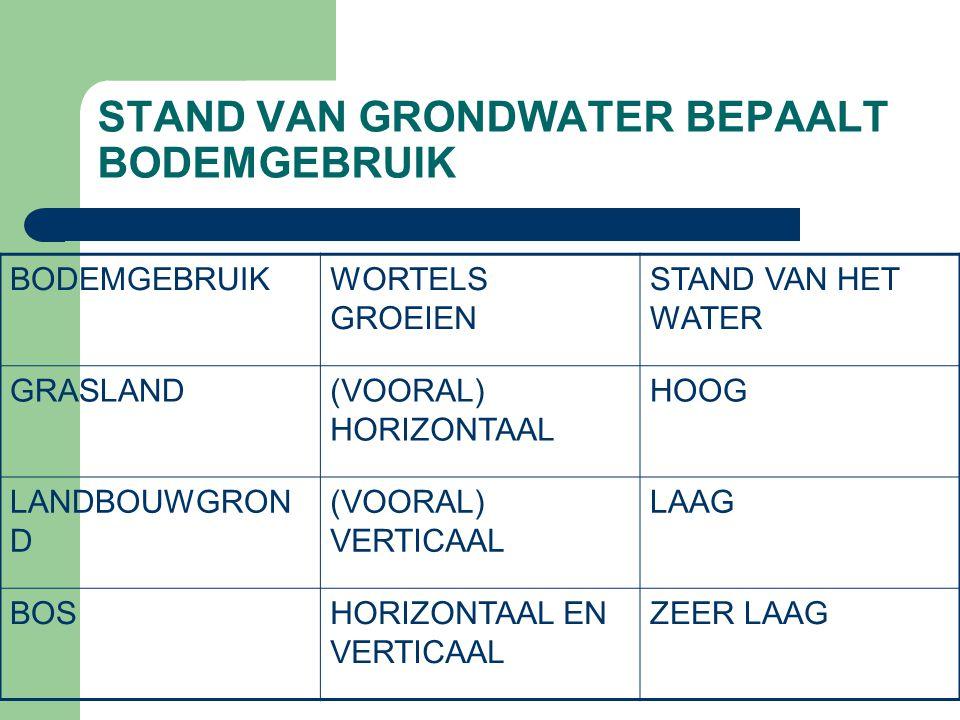 STAND VAN GRONDWATER BEPAALT BODEMGEBRUIK BODEMGEBRUIKWORTELS GROEIEN STAND VAN HET WATER GRASLAND(VOORAL) HORIZONTAAL HOOG LANDBOUWGRON D (VOORAL) VE