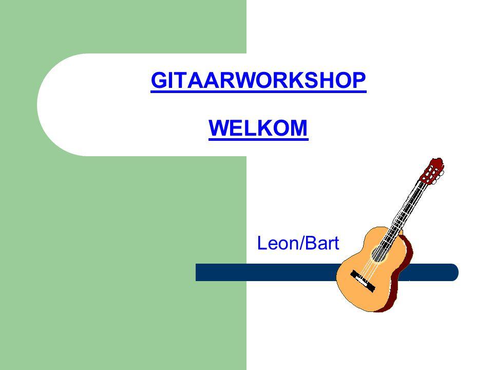 GITAARWORKSHOP WELKOM Leon/Bart