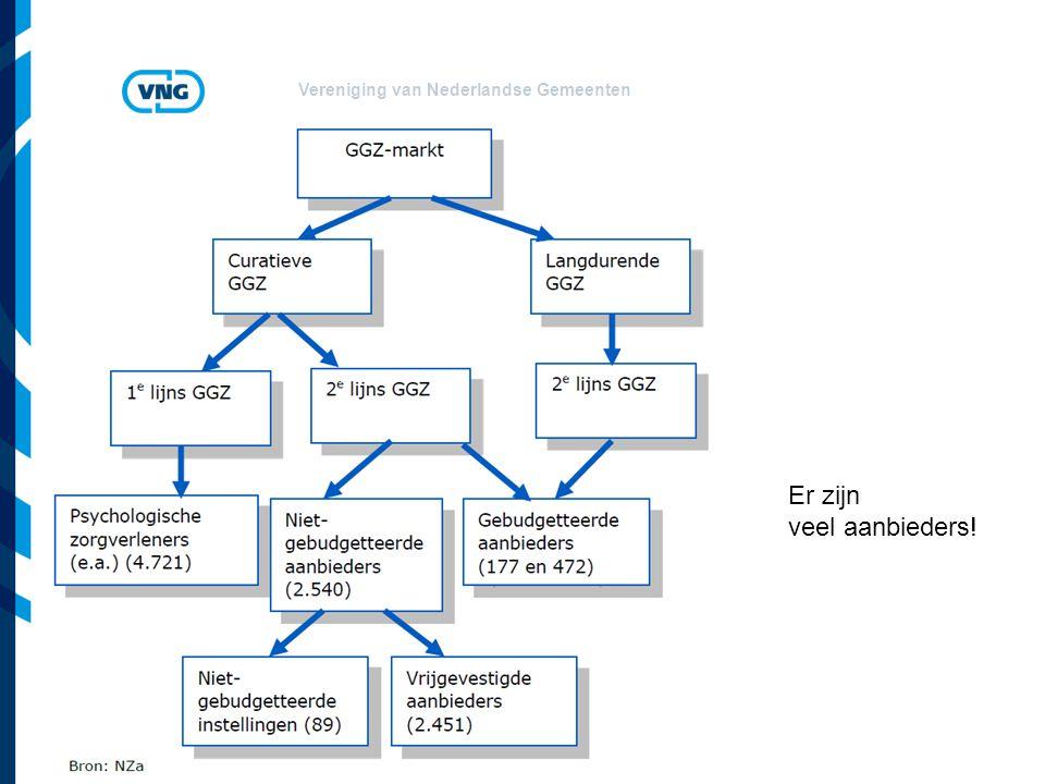 Vereniging van Nederlandse Gemeenten Er zijn veel aanbieders!
