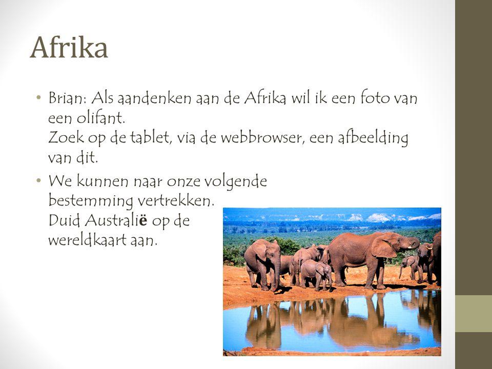 Afrika •Brian: Als aandenken aan de Afrika wil ik een foto van een olifant.