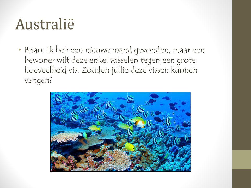 Australië •Brian: Ik heb een nieuwe mand gevonden, maar een bewoner wilt deze enkel wisselen tegen een grote hoeveelheid vis.