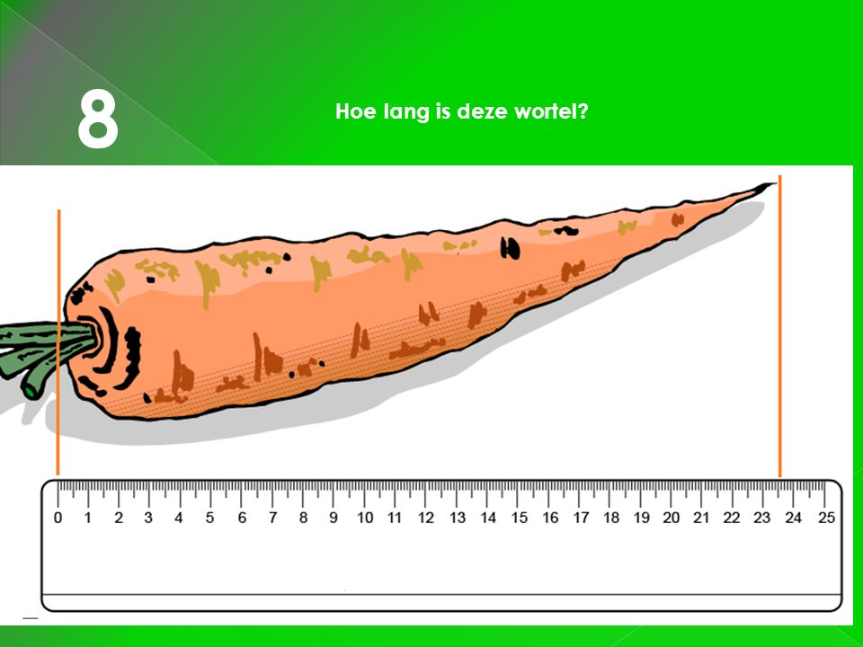 8 Hoe lang is deze wortel?