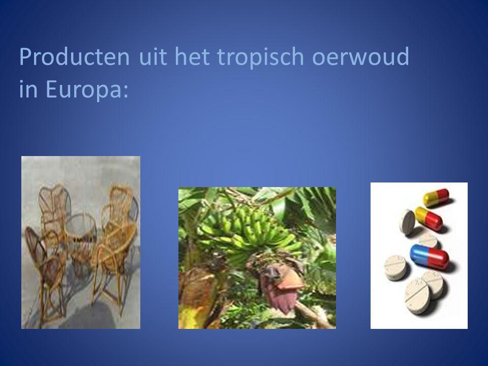 Producten uit het tropisch oerwoud in Europa: