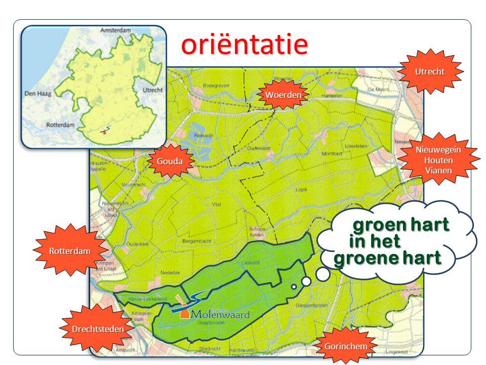 Rotterdam Drechtsteden Gouda Gorinchem NieuwegeinHoutenVianen Utrecht Woerden groen hart in het groene hart oriëntatie