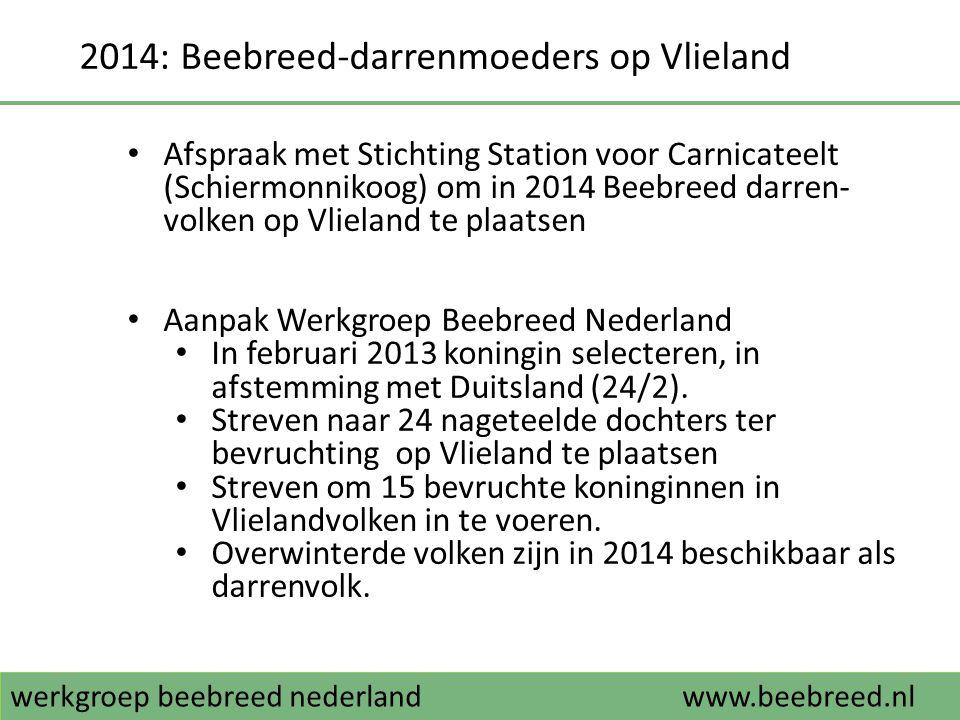 werkgroep beebreed nederlandwww.beebreed.nl 2014: Beebreed-darrenmoeders op Vlieland • Afspraak met Stichting Station voor Carnicateelt (Schiermonniko