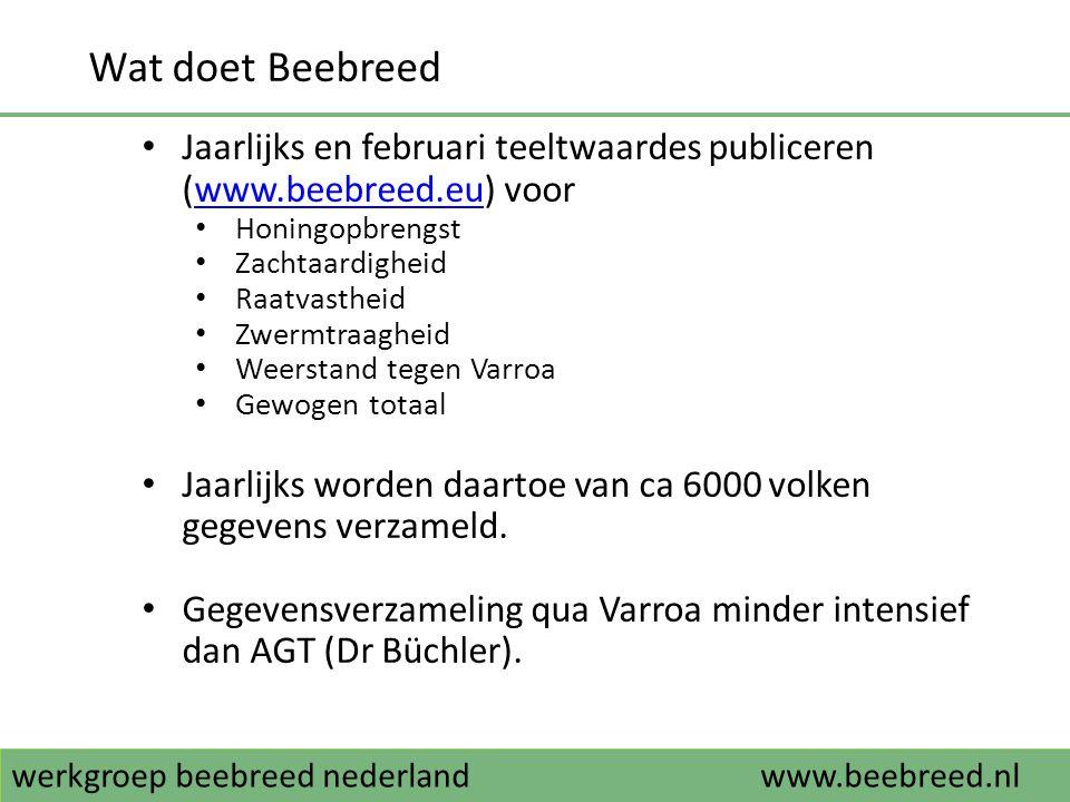 werkgroep beebreed nederlandwww.beebreed.nl Wat kan je als imker met Beebreed • Gebruik maken van de database met geteste koninginnen (www.beebreed.eu) omwww.beebreed.eu • Een koningin te kopen • Van een koningin nateelt aan te schaffen • De kwaliteiten van koninginnen op bevruchtingseilanden te bekijken om eigen nateelt aldaar te laten bevruchten • KI • Zelf volken testen, gegevens invoeren in de database, in februari teeltwaardes ontvangen en selecteren (www.beebreed.nl)www.beebreed.nl