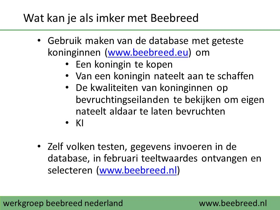 werkgroep beebreed nederlandwww.beebreed.nl Wat kan je als imker met Beebreed • Gebruik maken van de database met geteste koninginnen (www.beebreed.eu