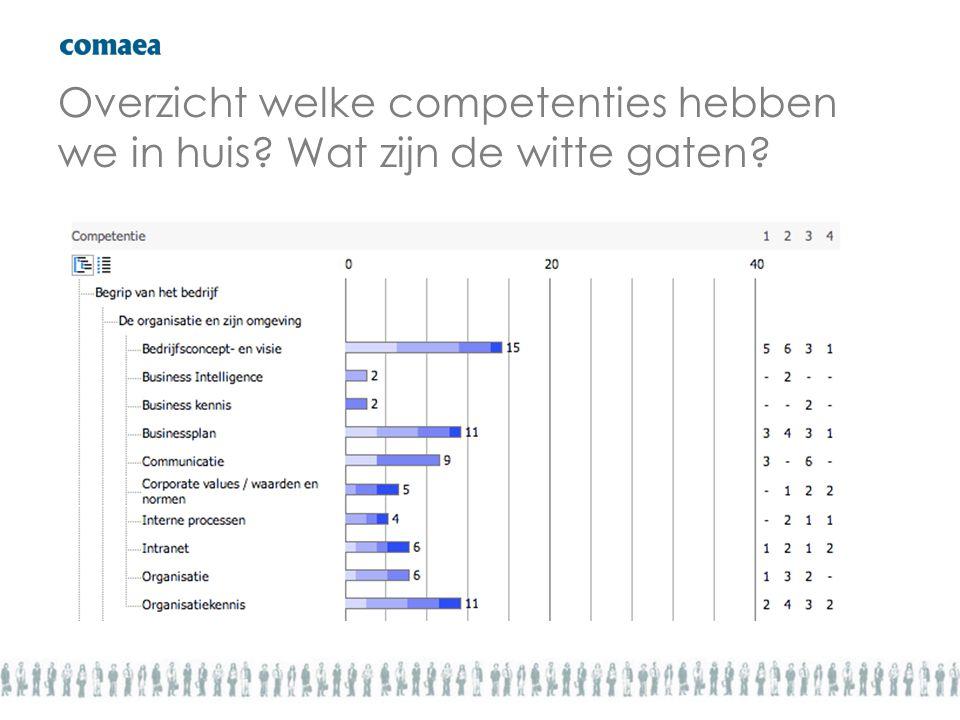 Overzicht welke competenties hebben we in huis? Wat zijn de witte gaten?