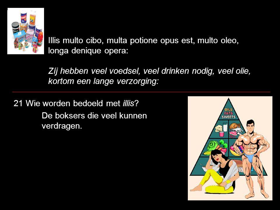 Illis multo cibo, multa potione opus est, multo oleo, longa denique opera: Zíj hebben veel voedsel, veel drinken nodig, veel olie, kortom een lange ve
