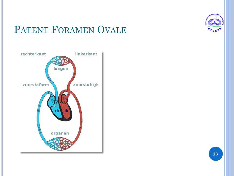 P ATENT F ORAMEN O VALE 23