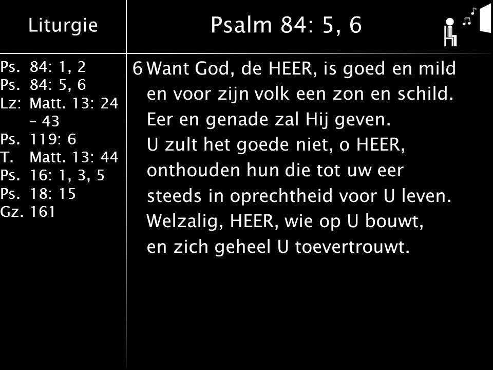 Liturgie Ps.84: 1, 2 Ps.84: 5, 6 Lz:Matt. 13: 24 – 43 Ps.119: 6 T.Matt. 13: 44 Ps.16: 1, 3, 5 Ps.18: 15 Gz.161 6Want God, de HEER, is goed en mild en