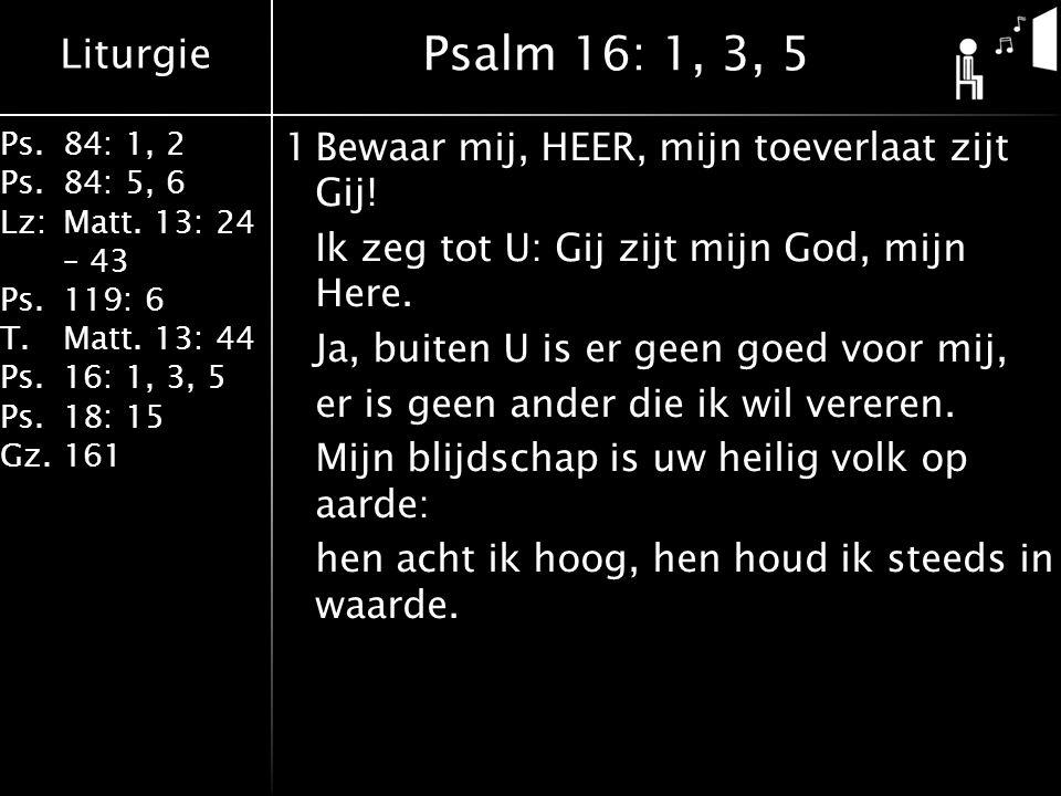 Liturgie Ps.84: 1, 2 Ps.84: 5, 6 Lz:Matt. 13: 24 – 43 Ps.119: 6 T.Matt. 13: 44 Ps.16: 1, 3, 5 Ps.18: 15 Gz.161 1Bewaar mij, HEER, mijn toeverlaat zijt