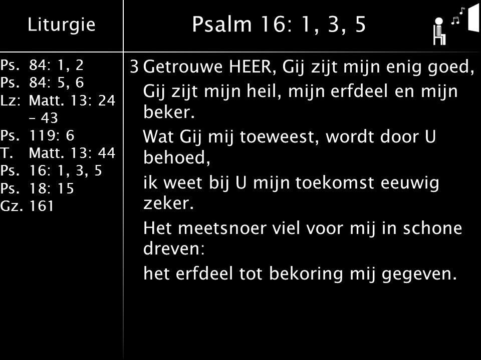 Liturgie Ps.84: 1, 2 Ps.84: 5, 6 Lz:Matt. 13: 24 – 43 Ps.119: 6 T.Matt. 13: 44 Ps.16: 1, 3, 5 Ps.18: 15 Gz.161 3Getrouwe HEER, Gij zijt mijn enig goed