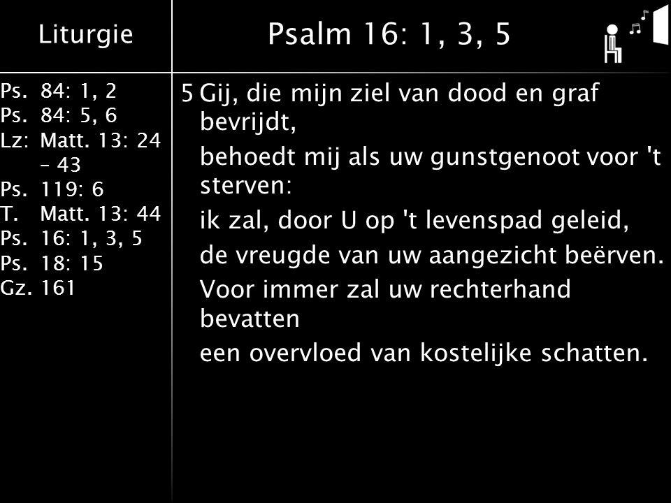 Liturgie Ps.84: 1, 2 Ps.84: 5, 6 Lz:Matt. 13: 24 – 43 Ps.119: 6 T.Matt. 13: 44 Ps.16: 1, 3, 5 Ps.18: 15 Gz.161 5Gij, die mijn ziel van dood en graf be