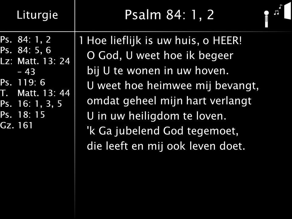 Liturgie Ps.84: 1, 2 Ps.84: 5, 6 Lz:Matt. 13: 24 – 43 Ps.119: 6 T.Matt. 13: 44 Ps.16: 1, 3, 5 Ps.18: 15 Gz.161 1Hoe lieflijk is uw huis, o HEER! O God