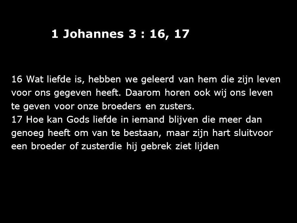 1 Johannes 3 : 16, 17 16 Wat liefde is, hebben we geleerd van hem die zijn leven voor ons gegeven heeft. Daarom horen ook wij ons leven te geven voor