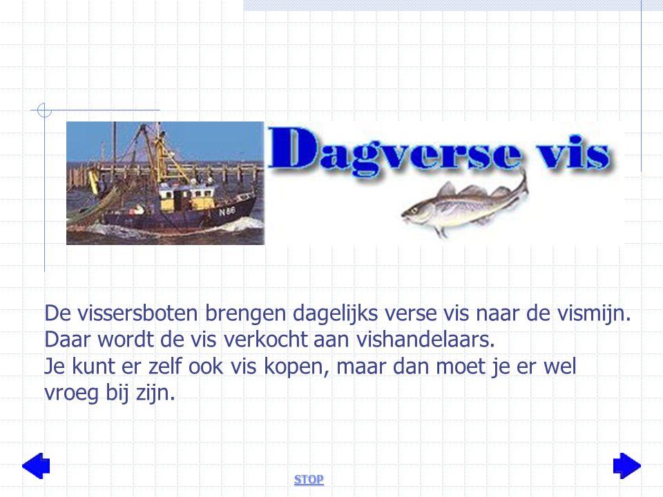 De vissersboten brengen dagelijks verse vis naar de vismijn.