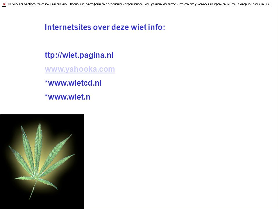 Internetsites over deze wiet info: ttp://wiet.pagina.nl www.yahooka.com *www.wietcd.nl *www.wiet.n Kijk naar de antwoorden van vraag 11 Voeg hier foto's of plaatjes in