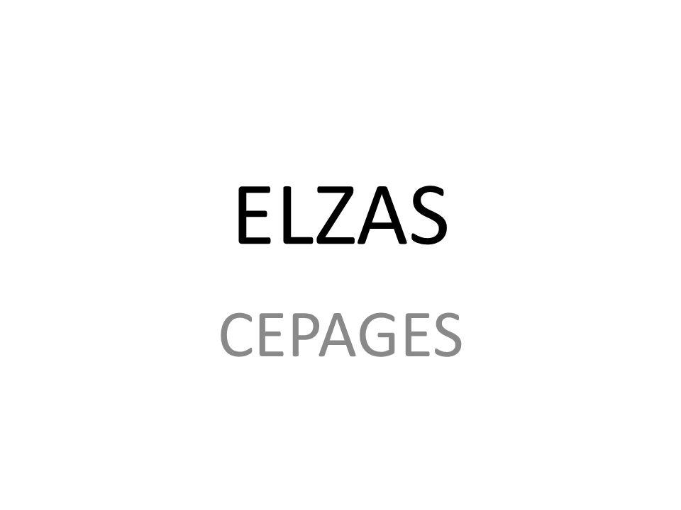 ELZAS CEPAGES