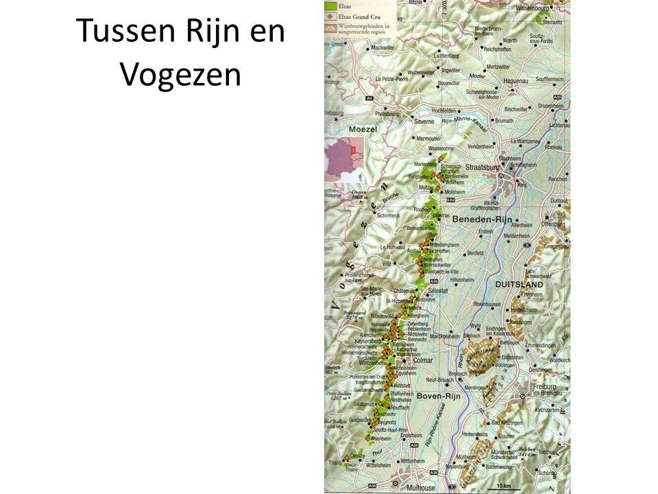 Terroir in vogelvlucht • Breedtegraad : 47.5° tot 48 ° NB • Hoogte : 180 – 420 m • Smalle vallei : 150 km lengte, max.