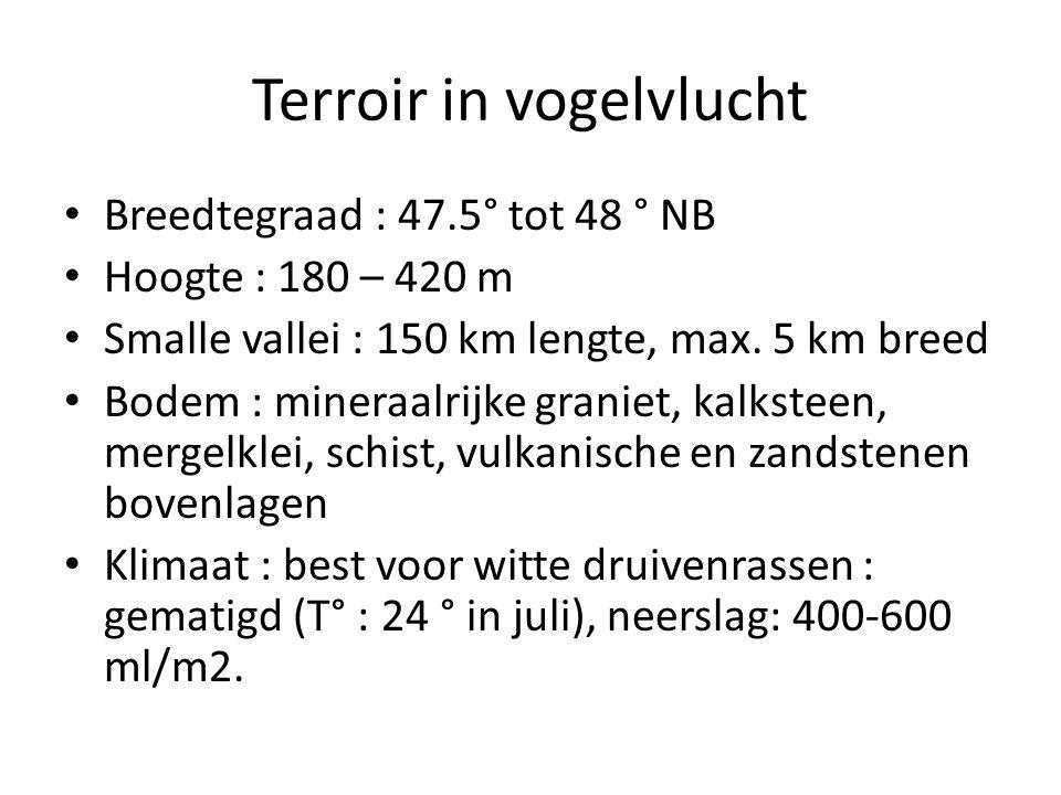 Terroir in vogelvlucht • Breedtegraad : 47.5° tot 48 ° NB • Hoogte : 180 – 420 m • Smalle vallei : 150 km lengte, max. 5 km breed • Bodem : mineraalri