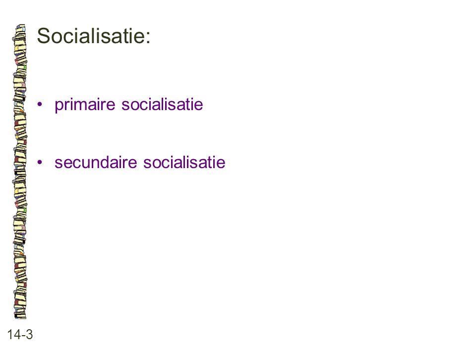 Socialisatie: 14-3 •primaire socialisatie •secundaire socialisatie